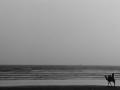 ラクダモノクロ地平線