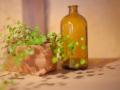 ガラス瓶と植物