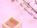 梅の花と升