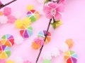 春・梅の花・金平糖