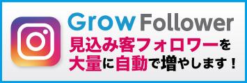 インスタグラム見込み客フォロワーを大量に自動で増やします!